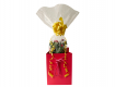 Flower - Birthday Flowers and Treats Gift Basket