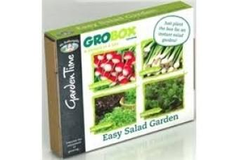 Easy Salad grobox
