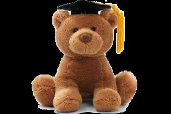 Gund Graduation Bear