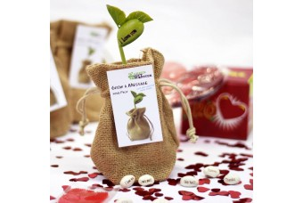 """Love"" Grow A Message Gift Set"