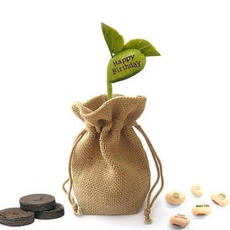 """""""Grow A Message"""" Jute Bag Gift Set"""