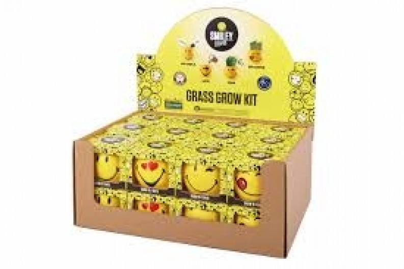 Novelty Grass Growing Kit by Mr Fothergill UK