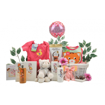 Bathtime Baby Girl Gift Basket