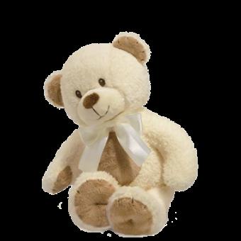 Cozy Cuddles Teddy Bear for Baby