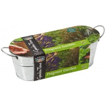 Fragrant Garden Windowsill Kit