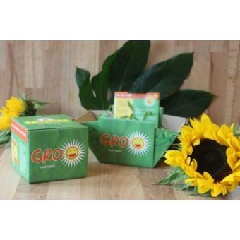 Grow Your Own Sunflowers Gro'pot Set