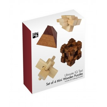 Set of 4 Mini Wooden Puzzle by Professor Puzzle. The Ultimate I Q Test.