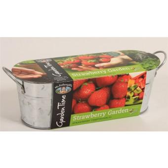 Strawberry Windowsill Growing Kit Tin